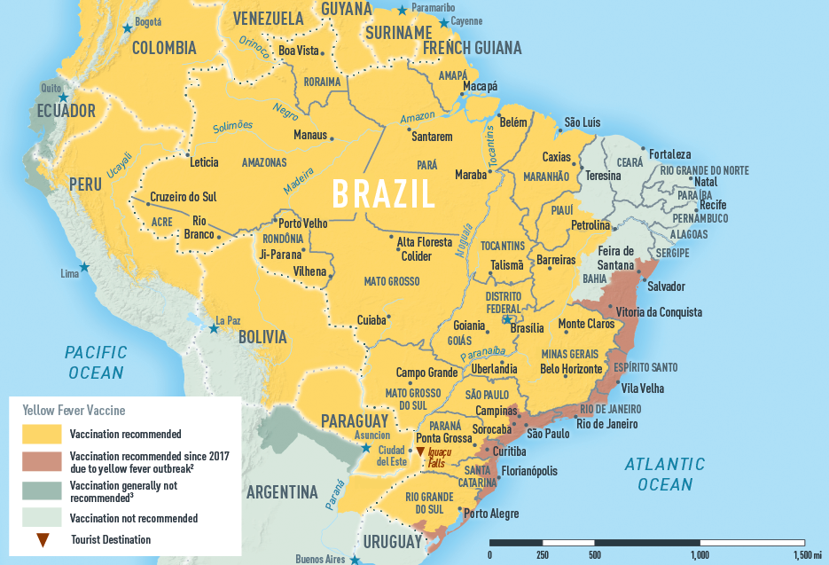 Brazil yellow fever map