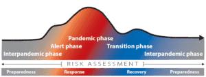 Le fasi di una pandemia